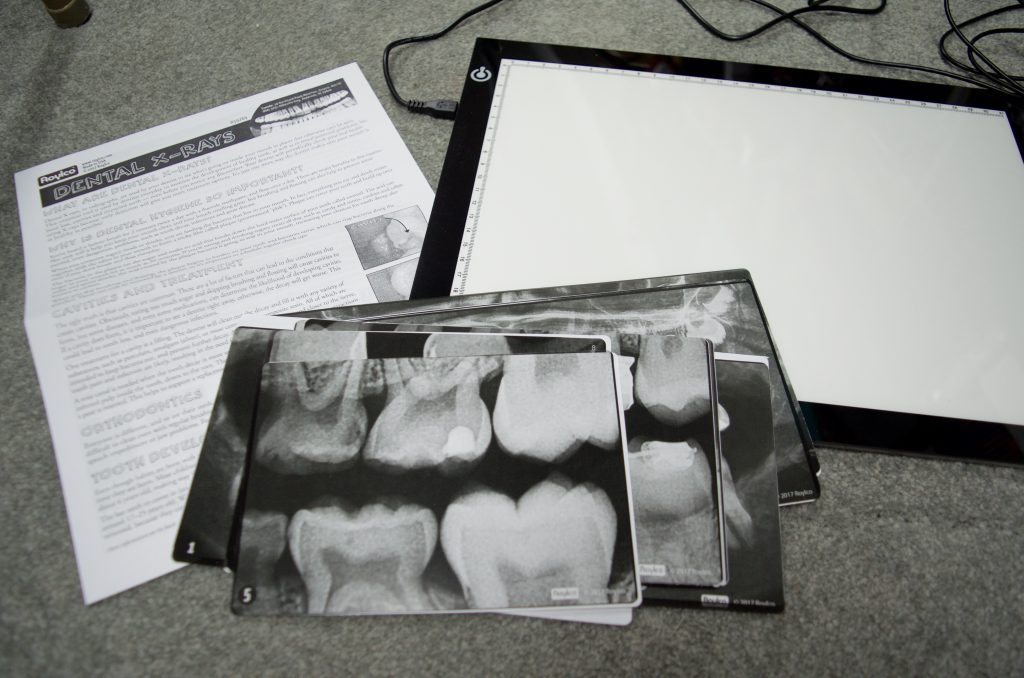 Dental X-Rays for Kids Learning Activity