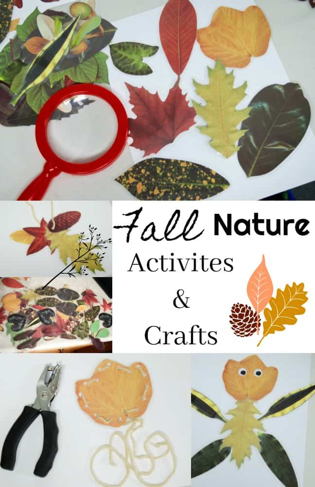 Fall Nature Activities and Crafts