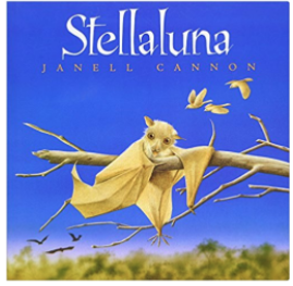 Stellaluna bat book for children