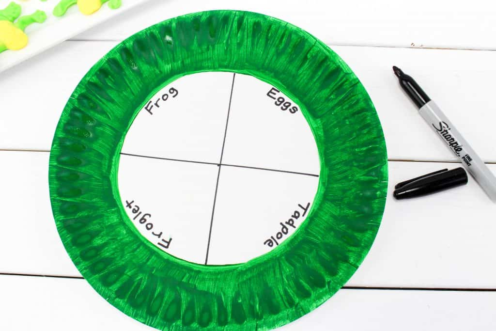 life cycle frog paper plate craft
