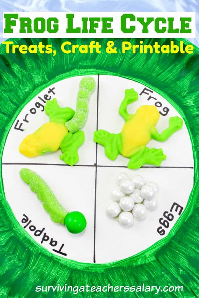 frog life cycle snacks and craft