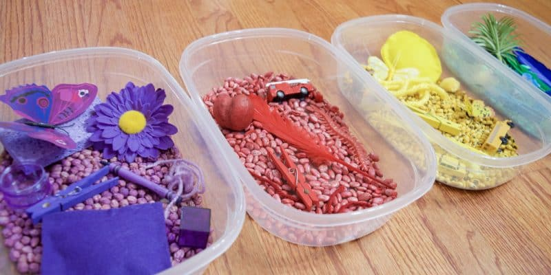 How to Dye Beans for Sensory Bin Idea: Learning Colors with Cody on WildBrain