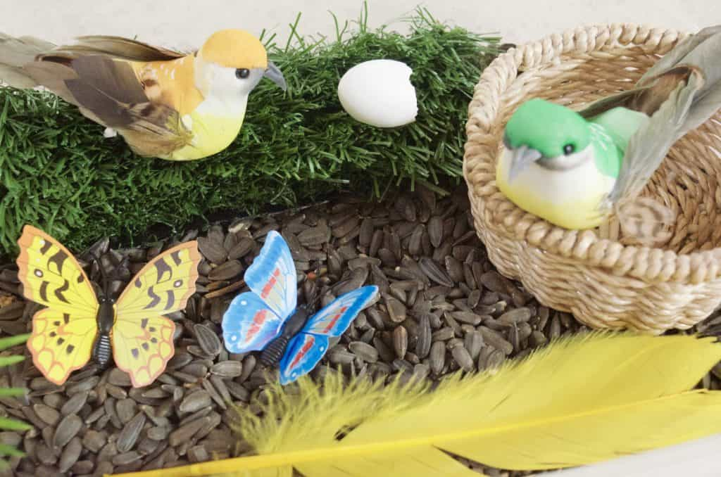 nature sensory bin with birds and butterflies