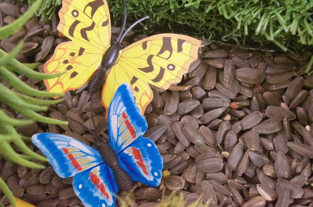 butterfly nature sensory bin idea
