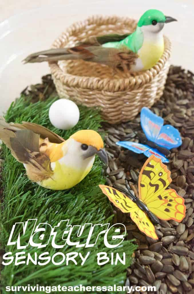 birds and butterflies nature sensory bin