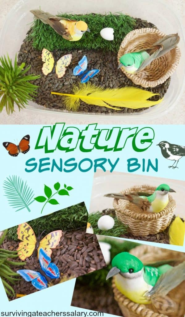 nature sensory bin for kids