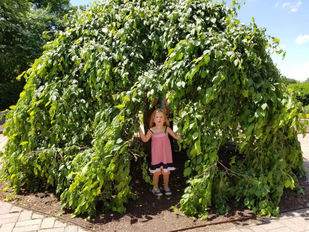 preschool girl standing in green garden