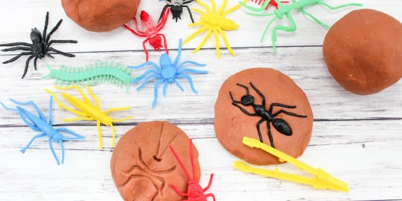 Insect & Bug Fossil Play Dough Sensory Play Recipe