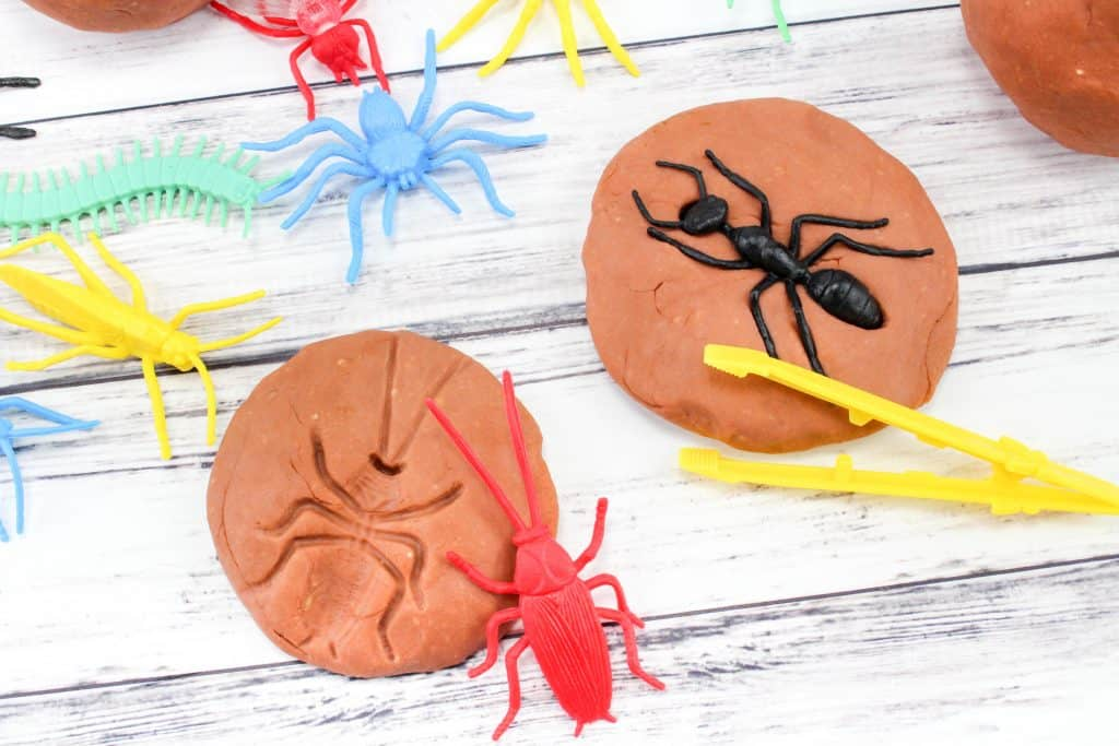 toy bugs and insects in fossil play dough