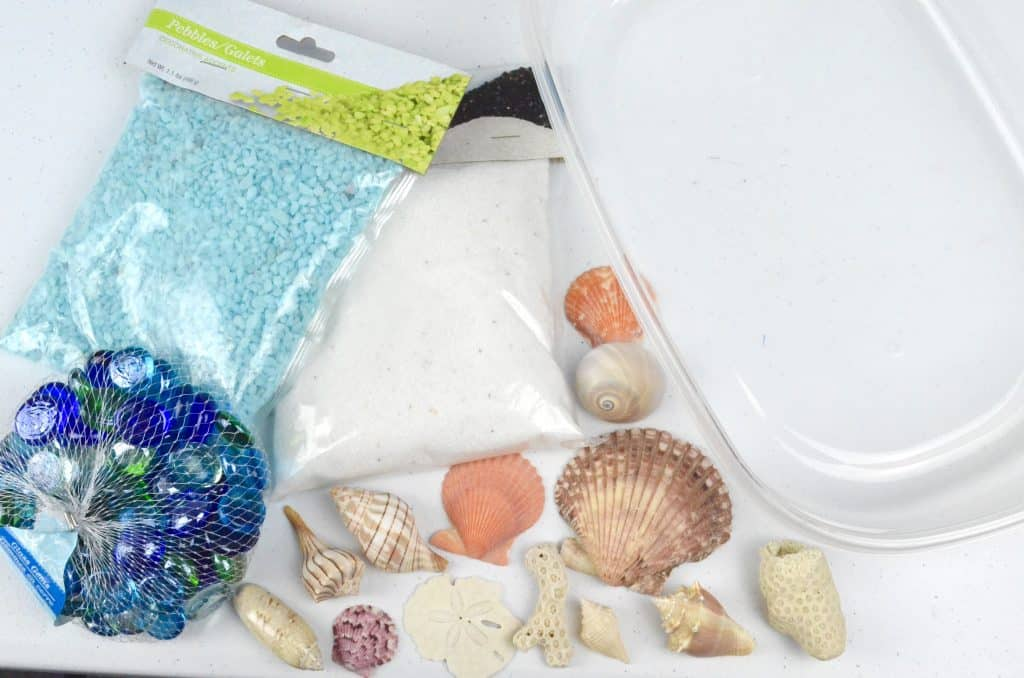 seashells and sand for beach sensory bin