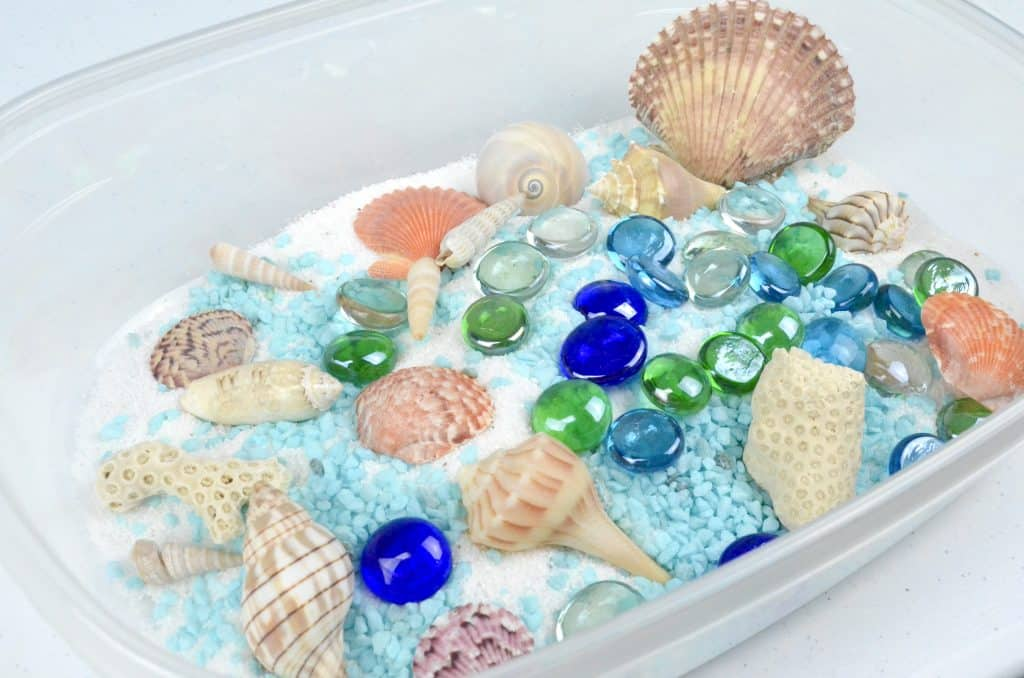 beach sensory bin with seashells blue and green colors