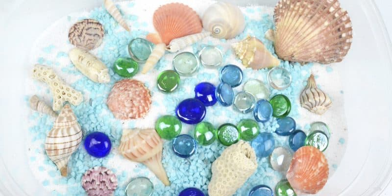 seashells and sand beach sensory bin