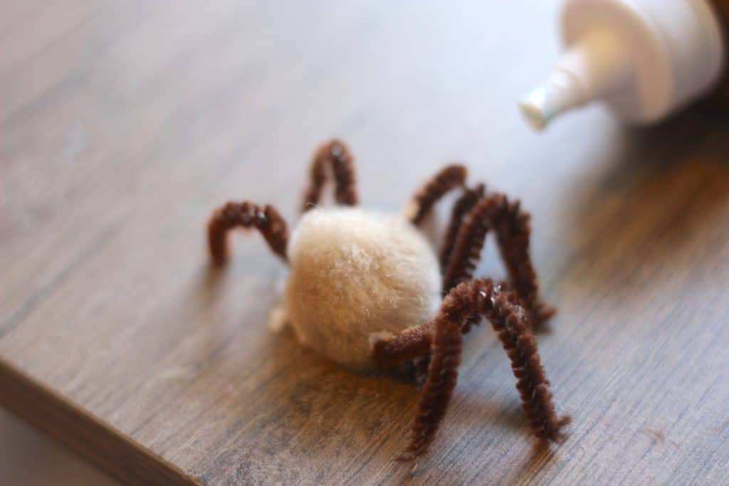 spider pom pom pipe cleaner craft