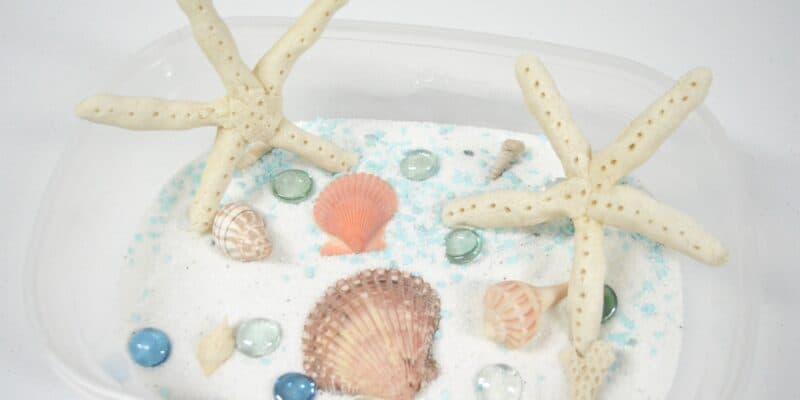 beach sensory bin salt dough starfish
