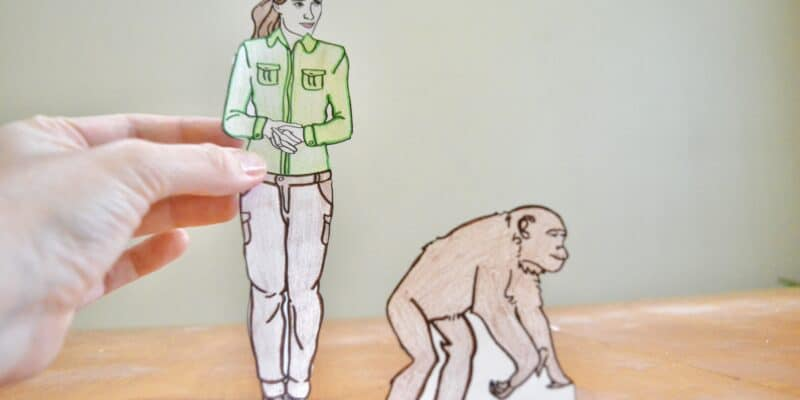 jane goodall and chimp paper doll