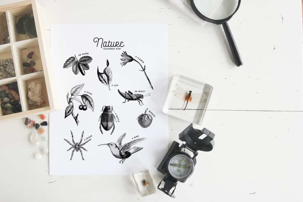 black and white scavenger hunt nature journal page