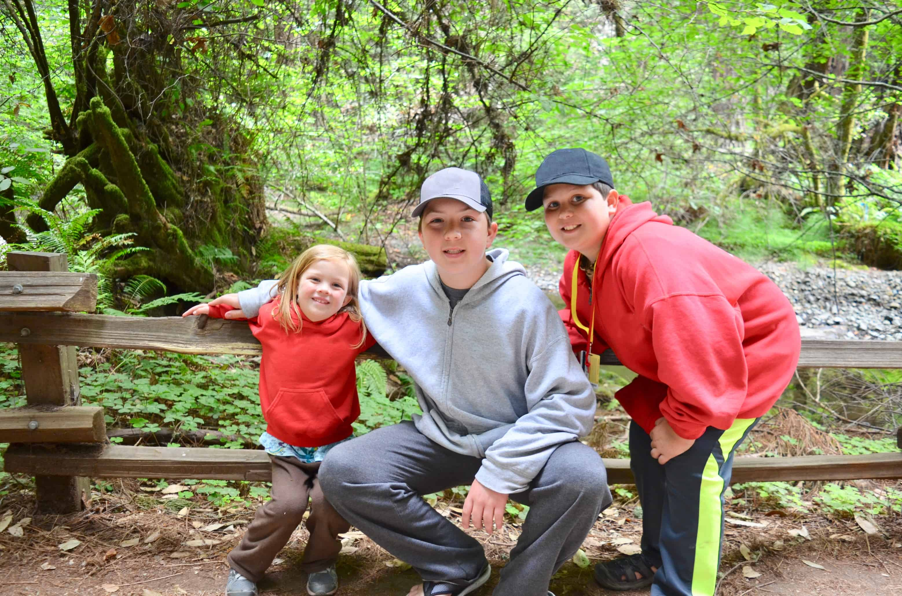 three kids siblings in forest hiking