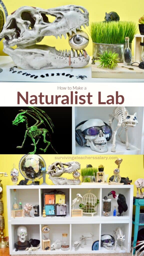 naturalist science lab collage