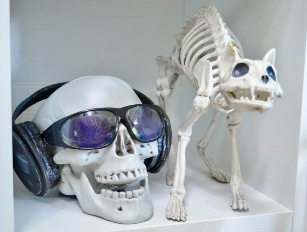 skeleton head with sunglasses and headphones