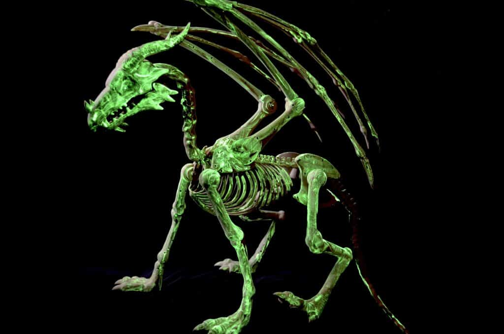glow in the dark dragon skeleton