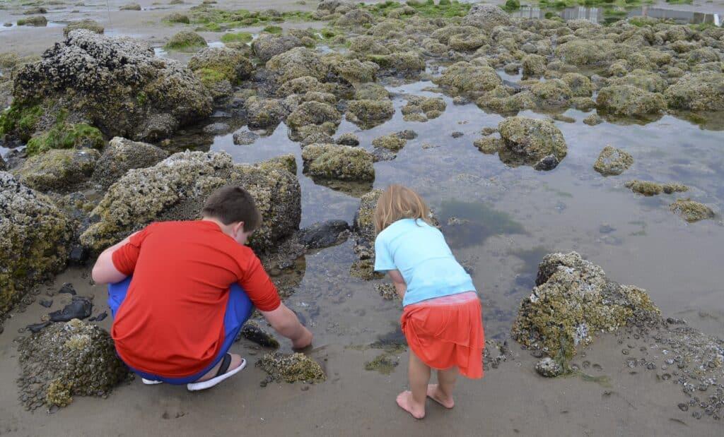 two kids looking in tidal pool