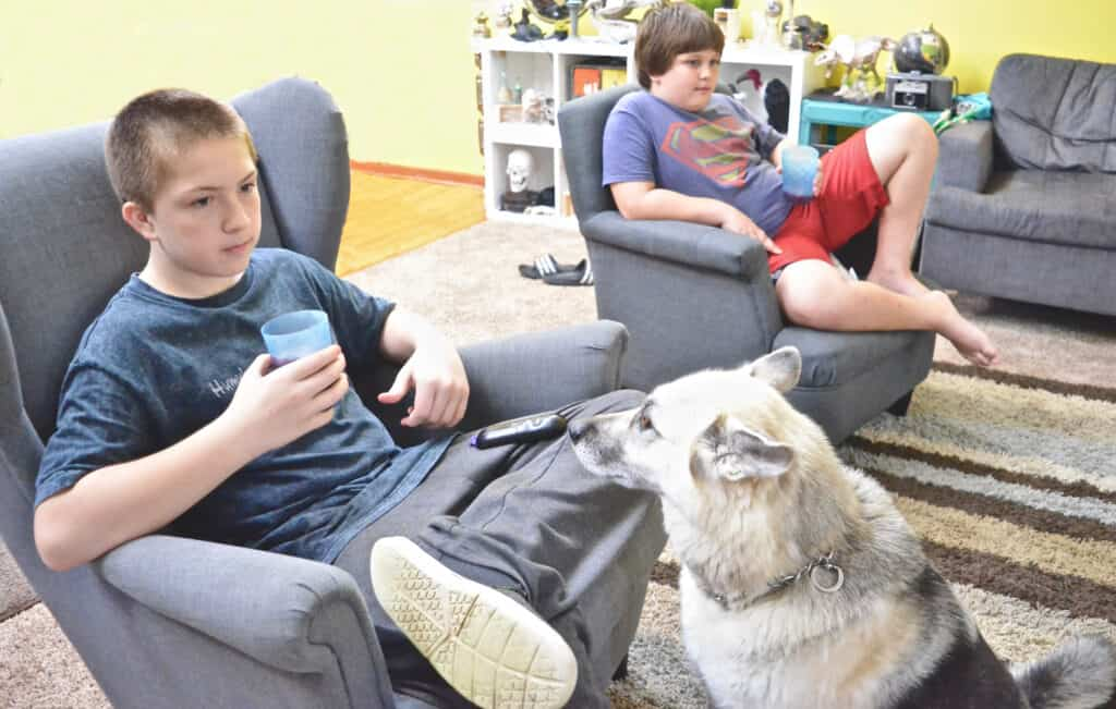 teen boys and dog watching tv