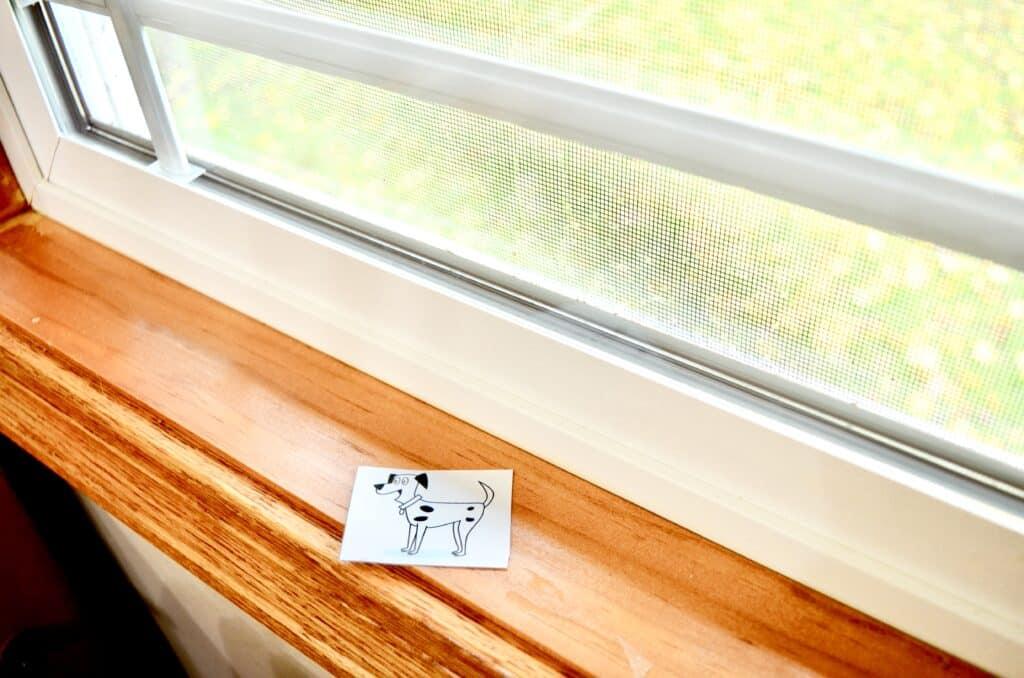 dalmation dog on window