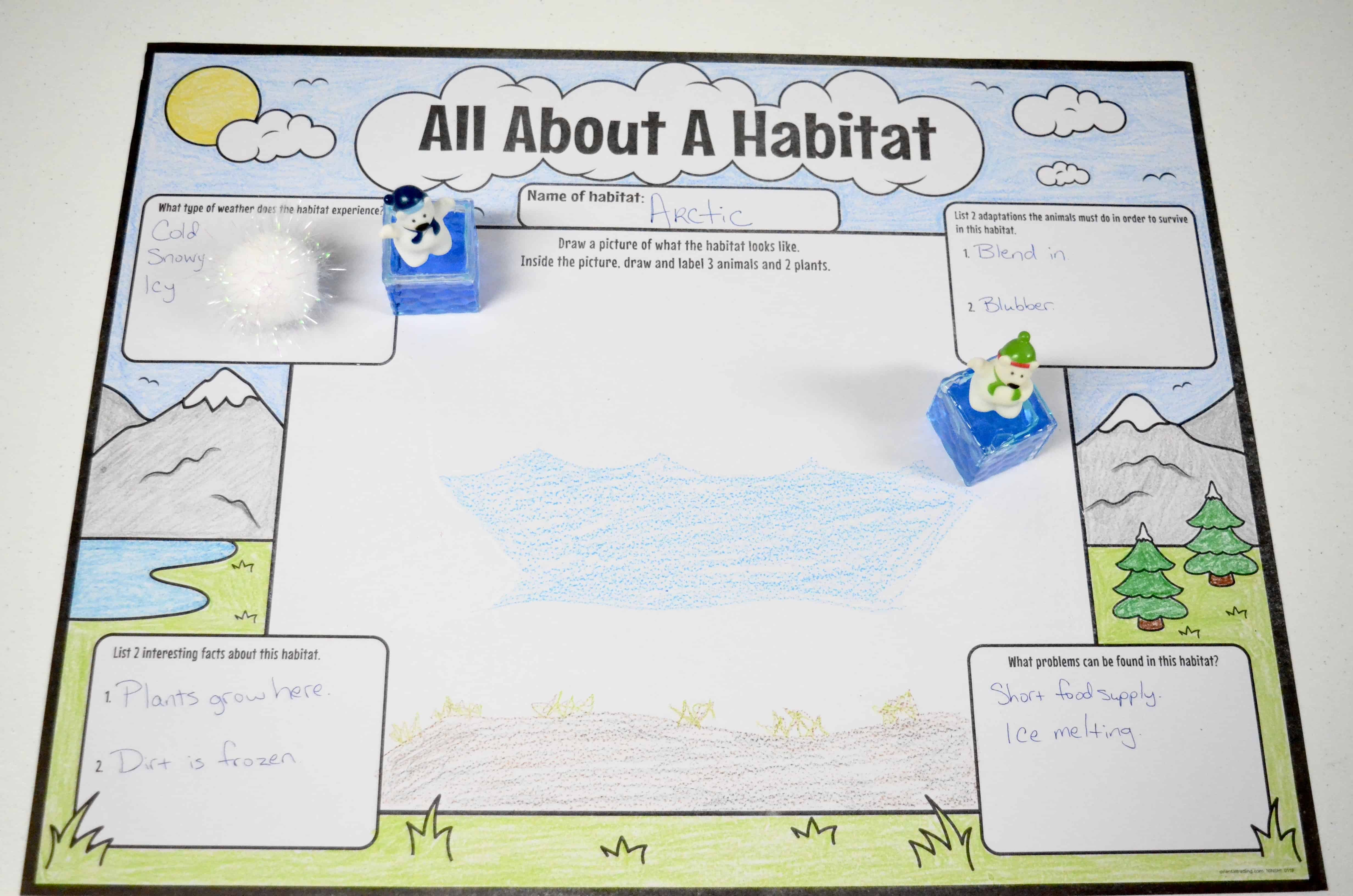 habitat worksheet for kids