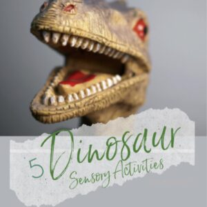 5 Dinosaur Sensory Activities eBook