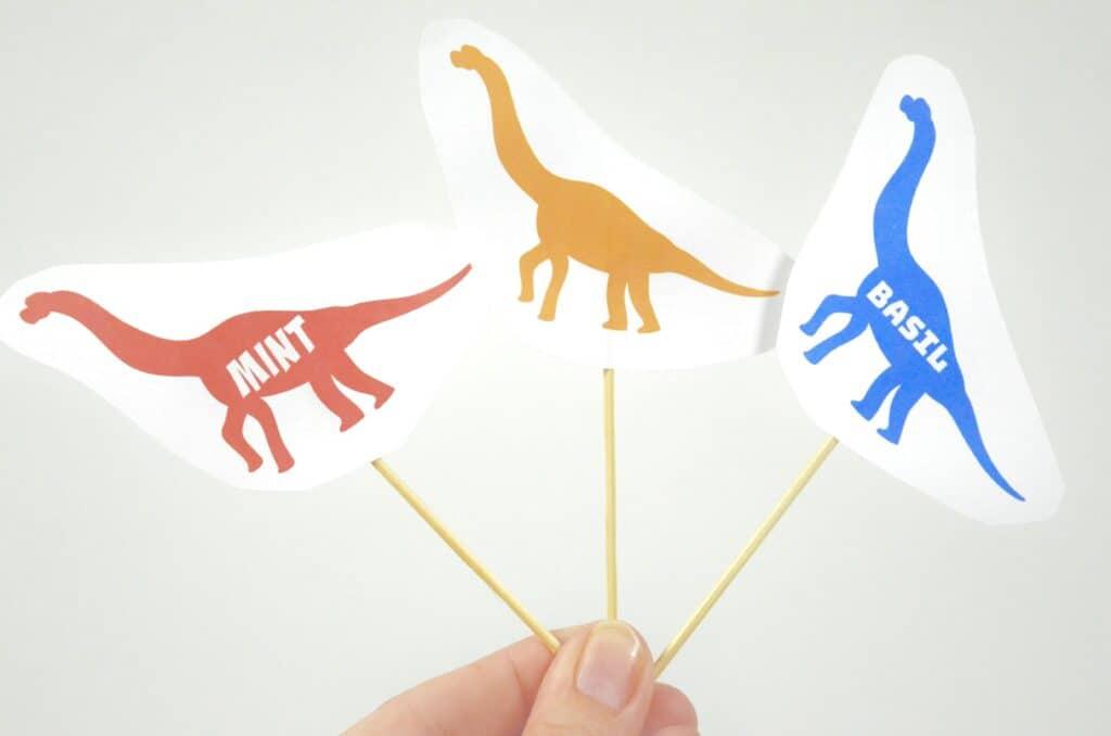 Dinosaur Sensory Garden - Olfactory & Taste Senses
