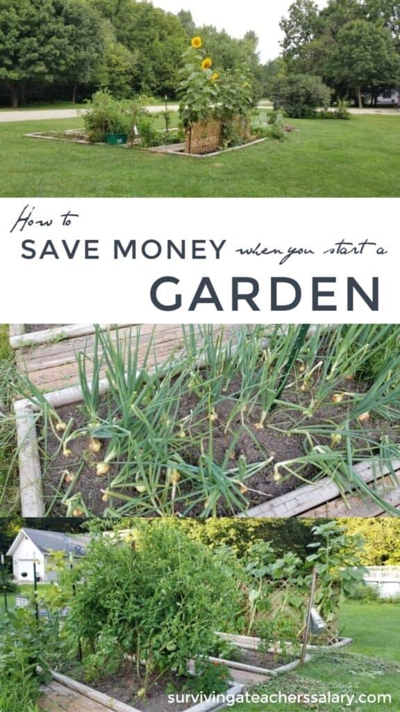Save Money when you start a garden