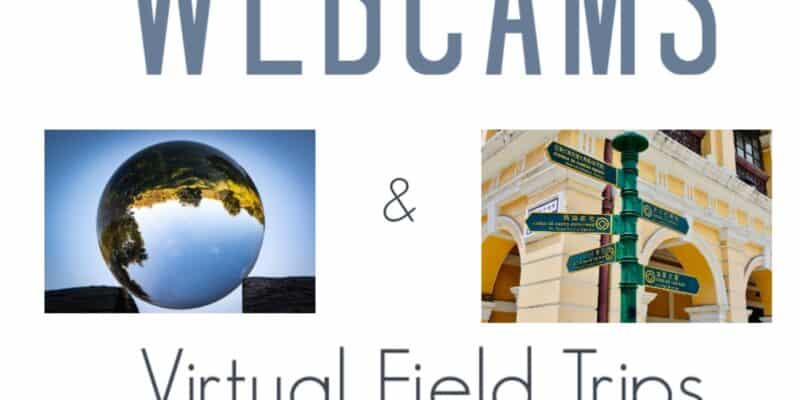 live animal web cams virtual field trips