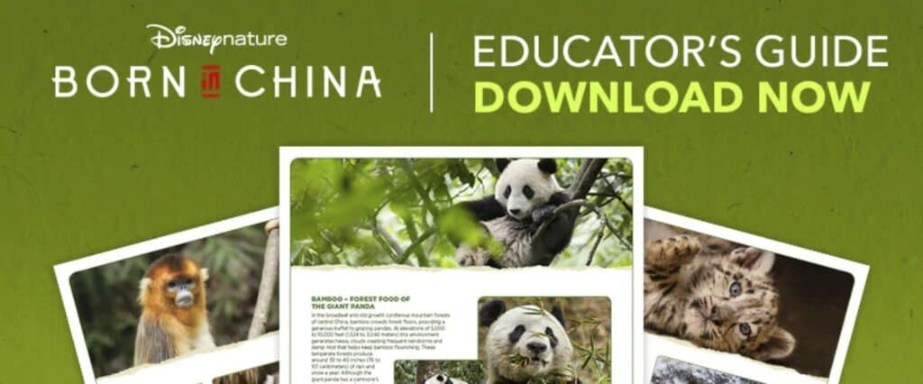 Disney Nature Born in China Educator's Guide