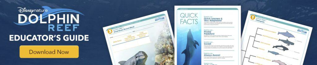 Disney Nature Dolphin Reef Educator's Guide
