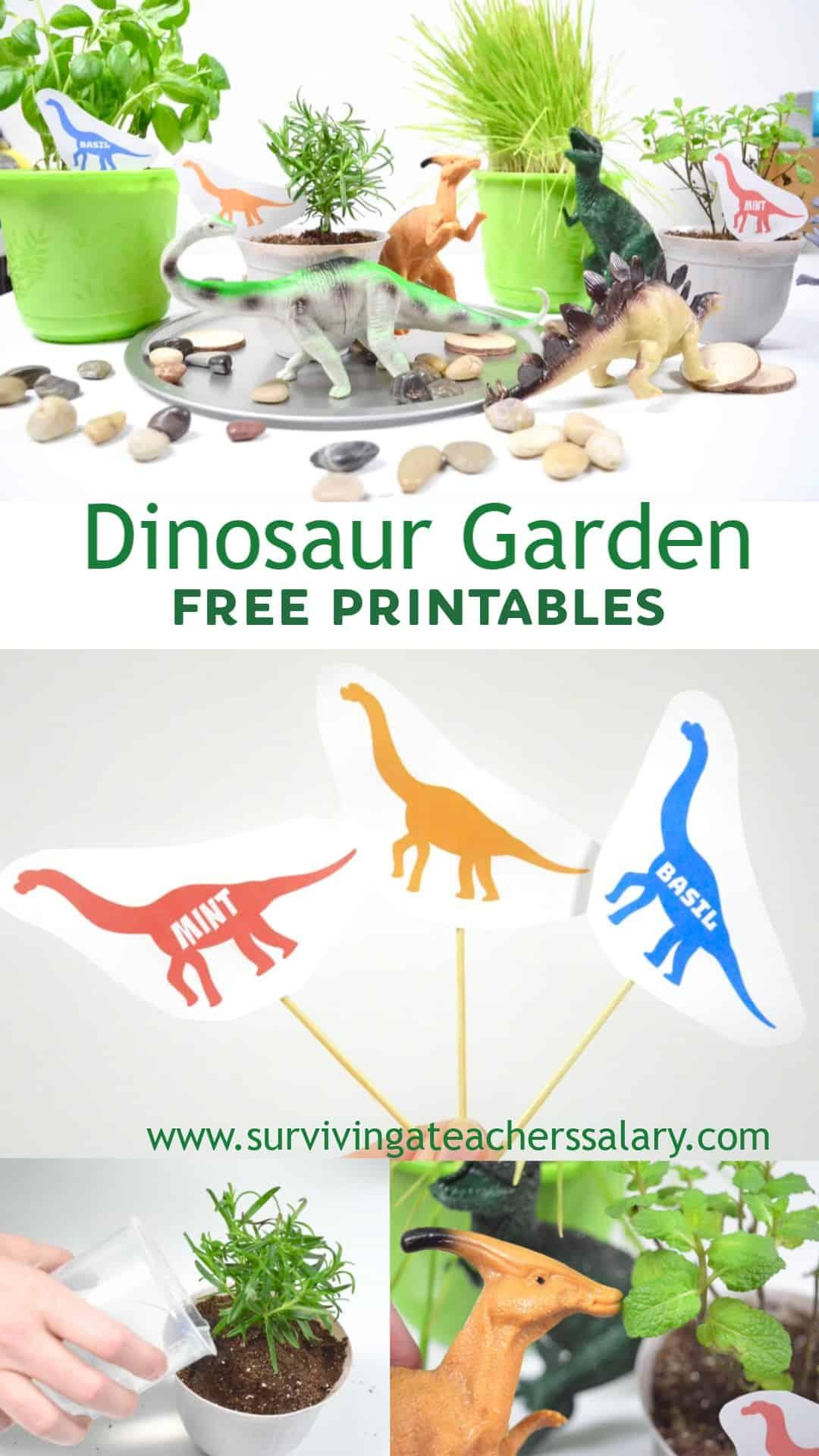 Dinosaur Sensory Herb Garden