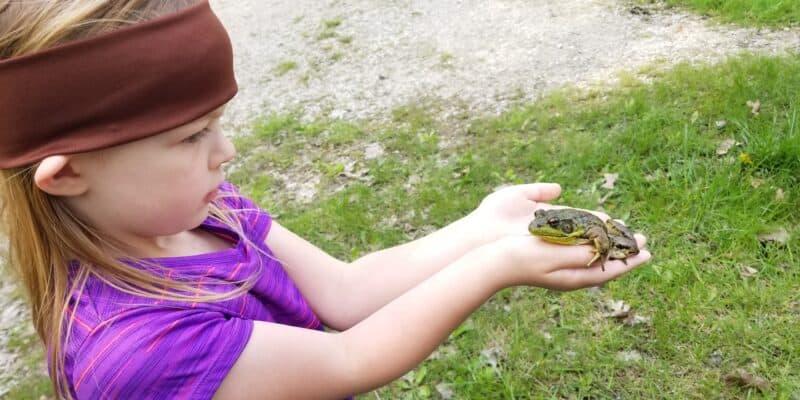 girl holding a bullfrog