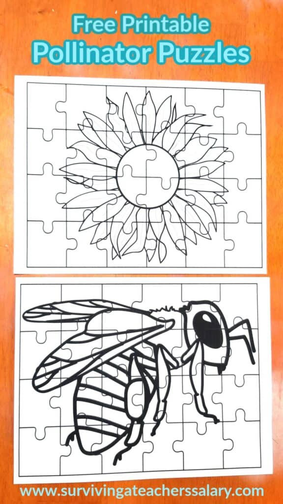bee and flower puzzle