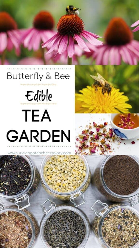 Butterfly & Bee Garden - Edible Tea Garden
