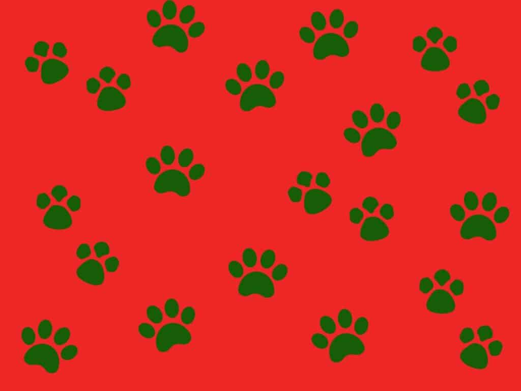 red and green paw print wrapping paper