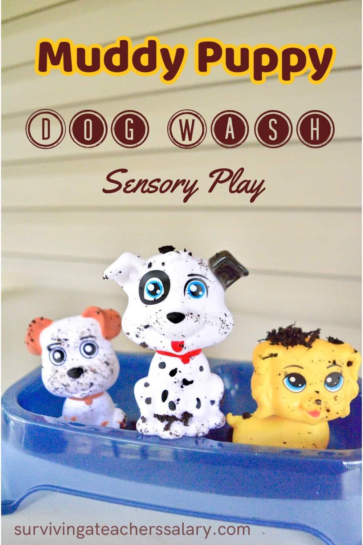 dog wash sensory bin