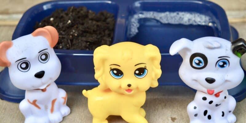toy dog sensory bin