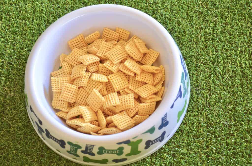dog bowl of chex mix