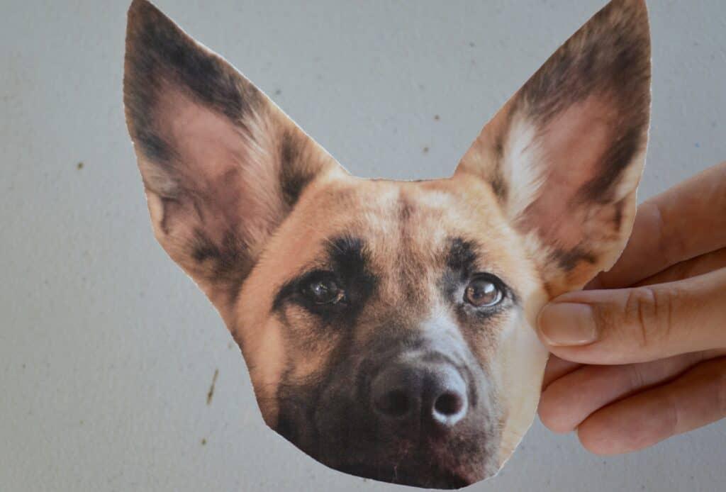 German Shepherd dog craft printable