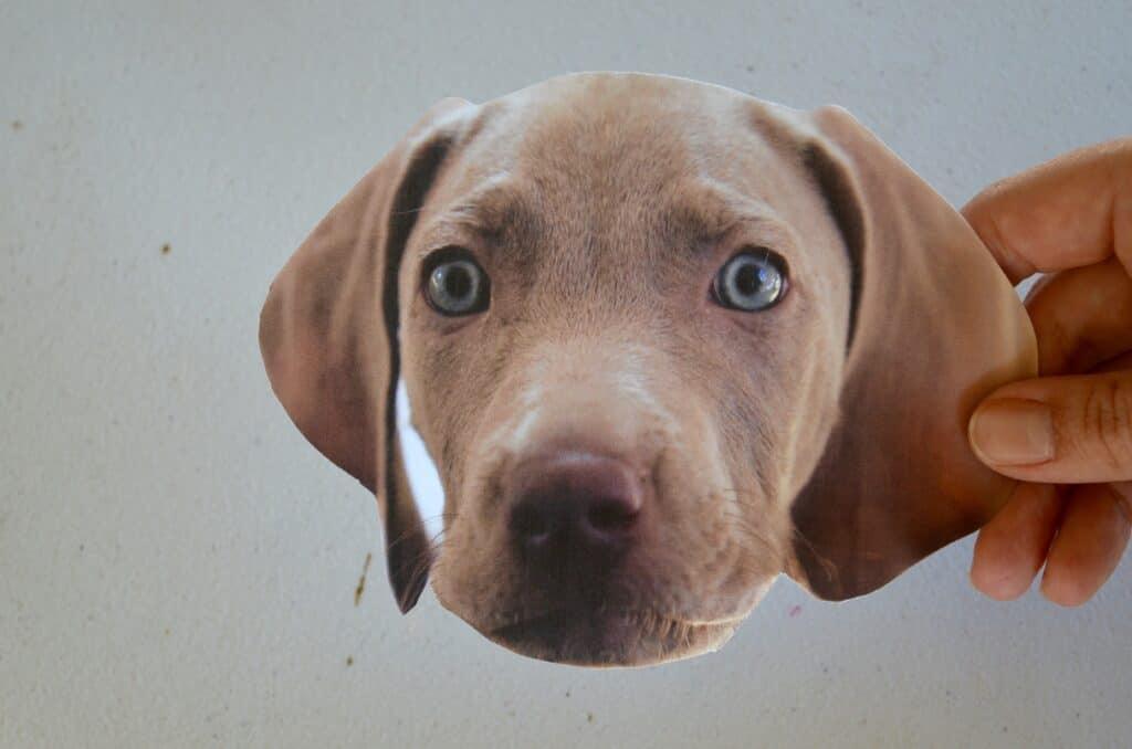 dog craft printable