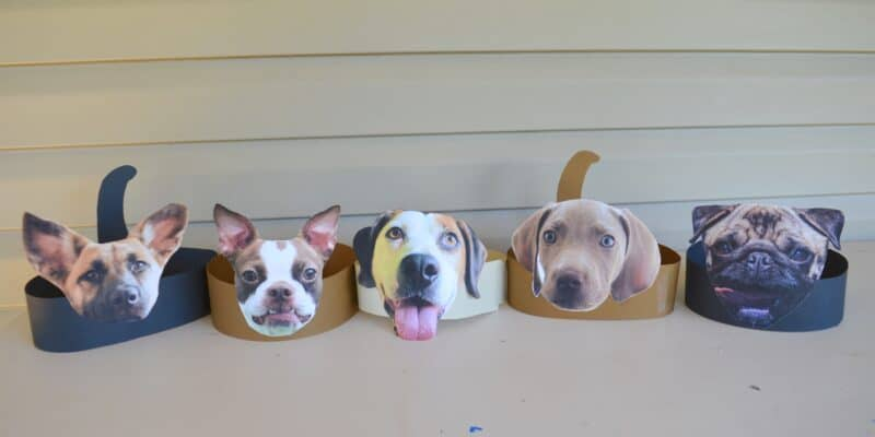 3d dog headband craft for kids