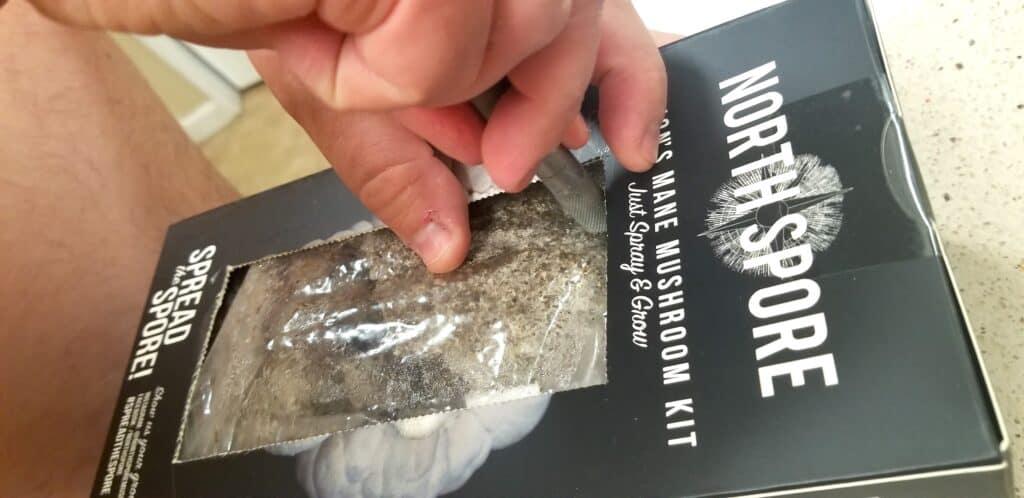 cutting into a mushroom countertop kit