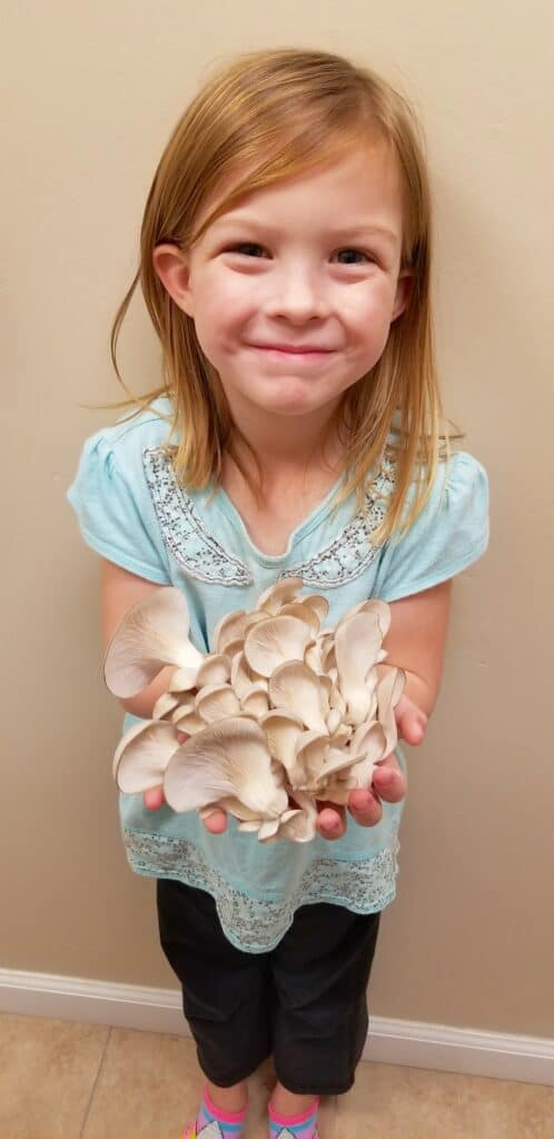 girl holding bunch of blue oyster mushrooms