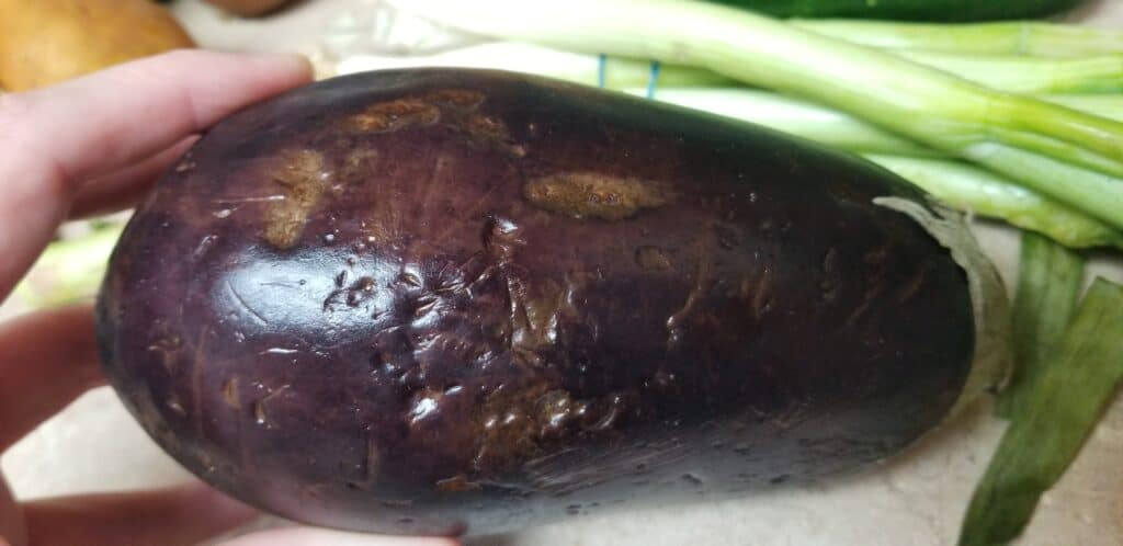 scratched up eggplant produce box